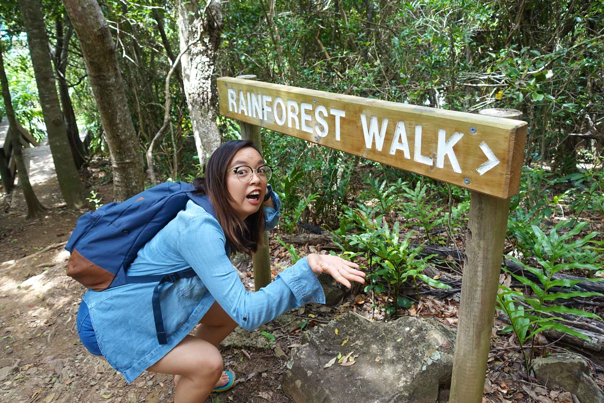 Going on a rainforest walk on Daydream Island