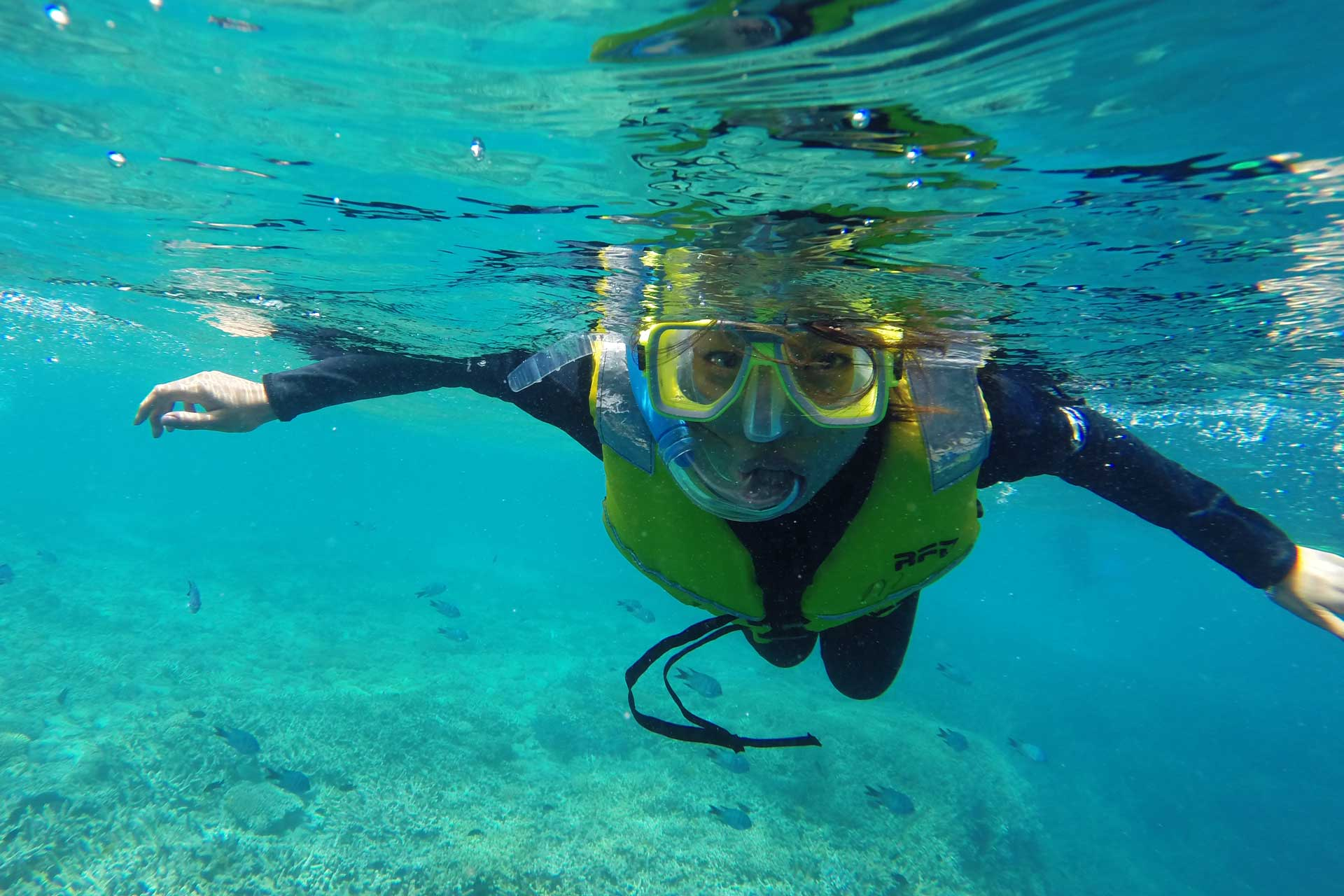 Exploring an underwater world at the Great Barrier Reef