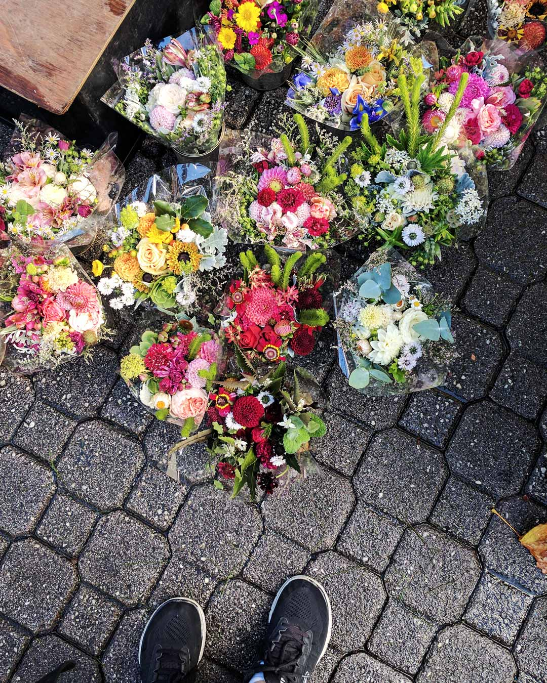 Fresh flowers at Salamanca Markets in Hobart, Tasmania