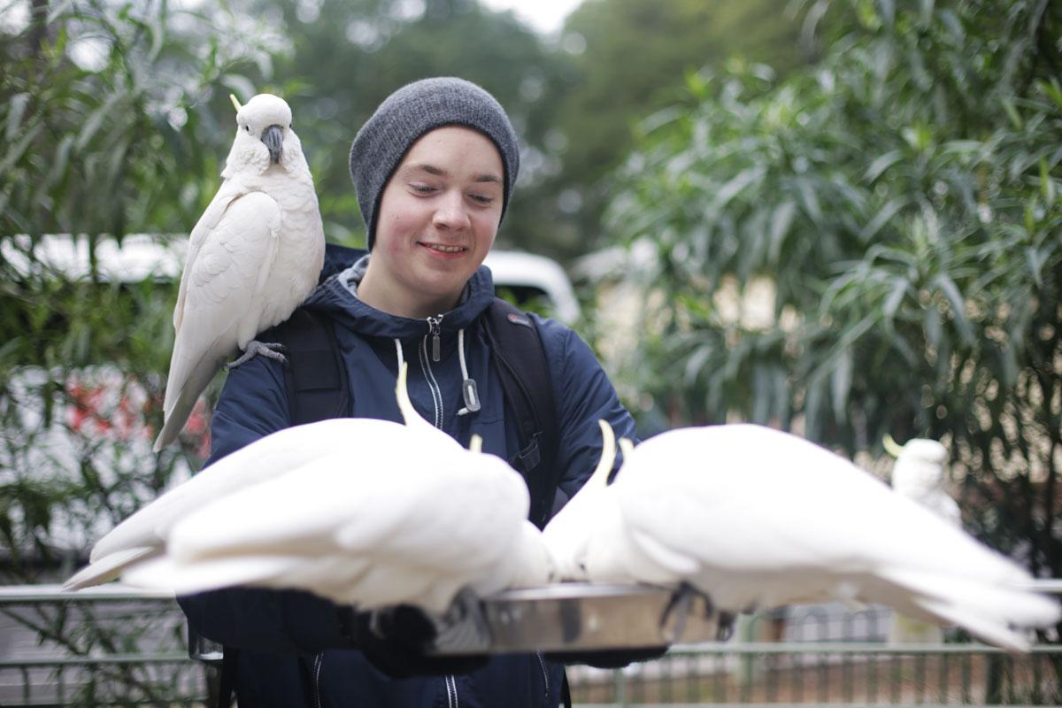 Mattias is a birds kinda guy